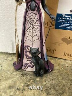 Jim Shore WITCH Black Cat Crow SPIDER WEB WEAVING WICKED WONDERS RARE Halloween