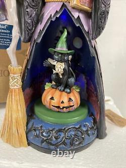 Rare Jim Shore Midnight Mischief Witch Cat Pumpkin Halloween Animated Lighted